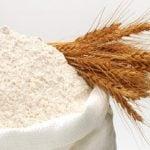 Qual a melhor farinha de trigo para fazer pão?